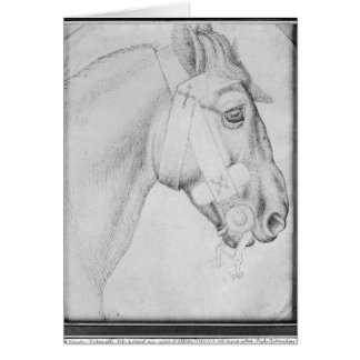 Head of a horse, from the The Vallardi Album Card