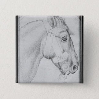 Head of a horse, from the The Vallardi Album Pinback Button