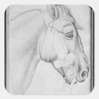 Head of a horse, from the The Vallardi Album Square Sticker