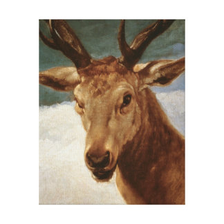 Head of a Stag, 1634 Canvas Print