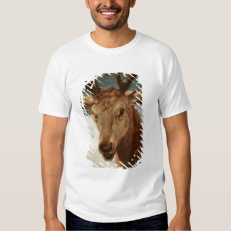 Head of a Stag, 1634 T-Shirt