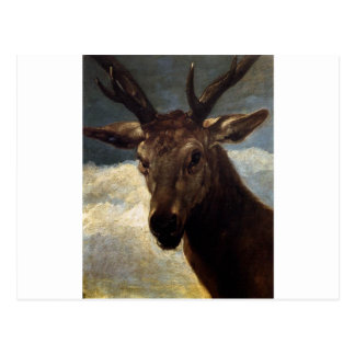 Head of a Stag by Diego Velazquez Postcard