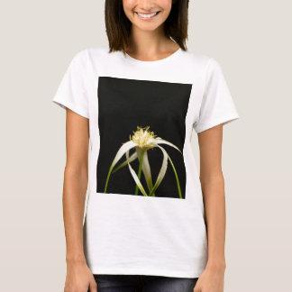 Head of a starrush whitetop, Rhynchospora colorata T-Shirt