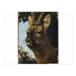 Head of a Young Doe by Gustave Courbet Postcard