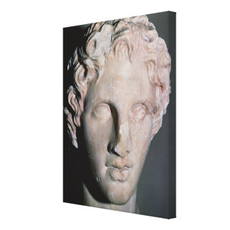 Head of Alexander the Great Canvas Print