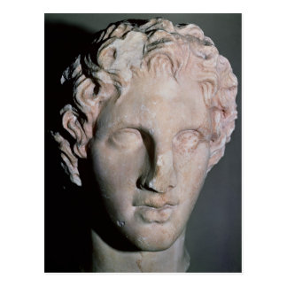 Head of Alexander the Great Postcard