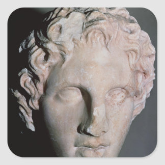 Head of Alexander the Great Square Sticker