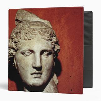 Head of Apollo from Ephesus 3 Ring Binder