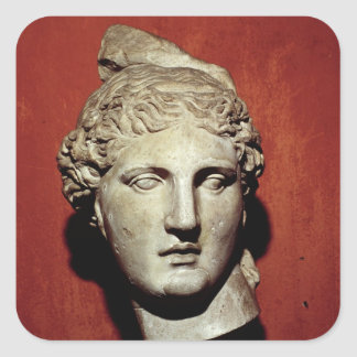 Head of Apollo from Ephesus Square Sticker