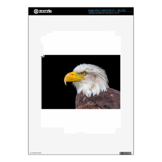 Head of bald eagle on black decals for iPad 3
