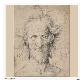 Head of Bearded Old Man (Saturn) by Durer Wall Skins