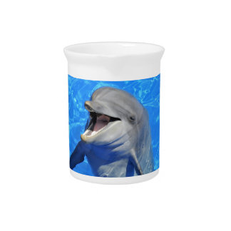 Head of  bottlenose dolphin beverage pitcher
