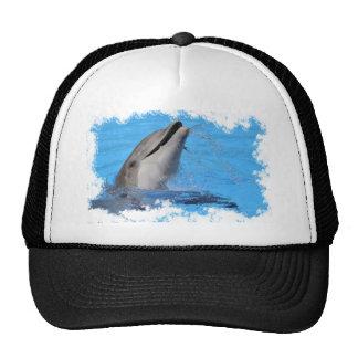 Head of  bottlenose dolphin trucker hat