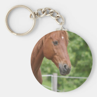 Head of brown horse keychains