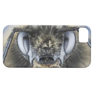 Head of bumblebee iPhone 5 covers