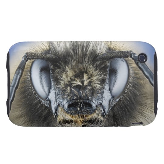 Head of bumblebee iPhone 3 tough cover