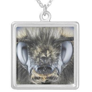 Head of bumblebee necklace