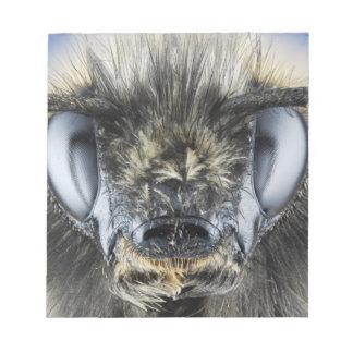 Head of bumblebee notepad