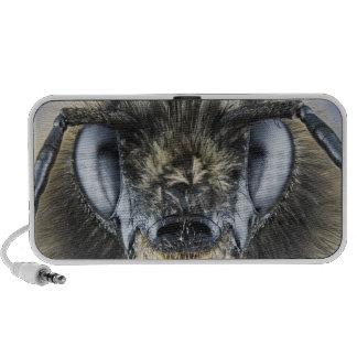 Head of bumblebee speaker system
