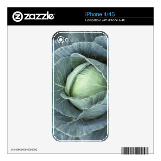 Head of cabbage with drops of water decals for iPhone 4