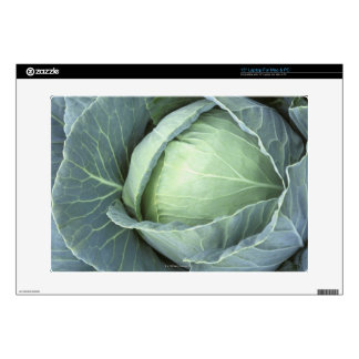 Head of cabbage with drops of water decals for laptops