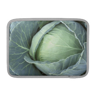 Head of cabbage with drops of water MacBook sleeve