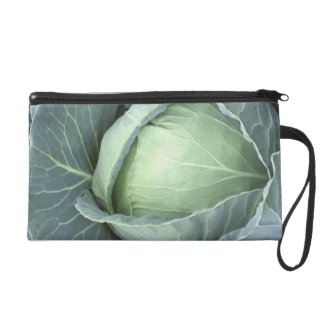 Head of cabbage with drops of water wristlet