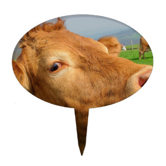 HEAD OF COW CAKE TOPPER