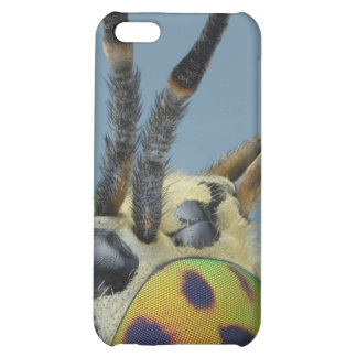 Head of deer fly cover for iPhone 5C