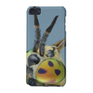 Head of deer fly iPod touch 5G case