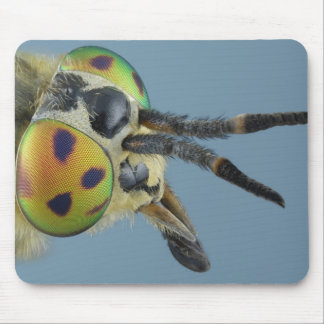 Head of deer fly mouse pad