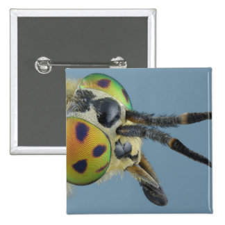 Head of deer fly pinback button