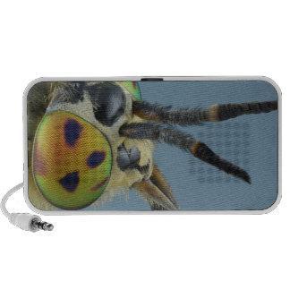 Head of deer fly iPhone speakers