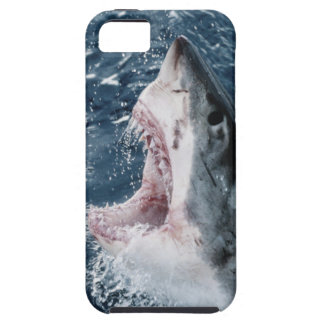 Head of Great White Shark iPhone SE/5/5s Case