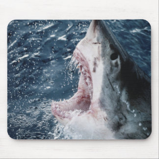 Head of Great White Shark Mouse Pad