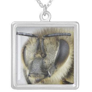 Head of honeybee custom jewelry