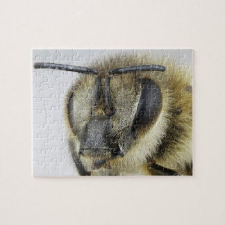Head of honeybee jigsaw puzzle