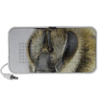Head of honeybee mp3 speakers