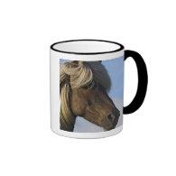 Head of Icelandic horse, Iceland Coffee Mugs