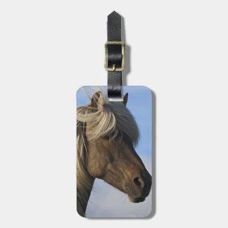 Head of Icelandic horse, Iceland Luggage Tag