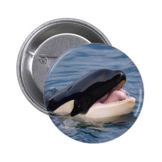 Head of killer whale button