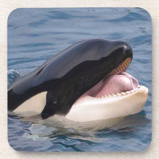 Head of killer whale coaster