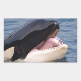 Head of killer whale rectangular sticker