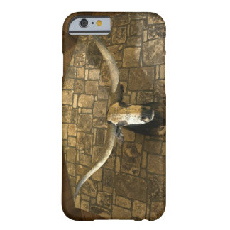 Head of longhorn steer mounted on wall barely there iPhone 6 case