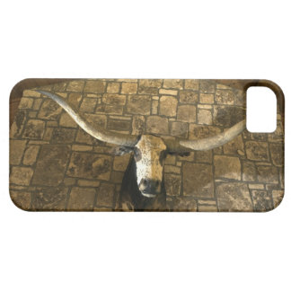 Head of longhorn steer mounted on wall iPhone SE/5/5s case