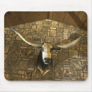 Head of longhorn steer mounted on wall mouse pad