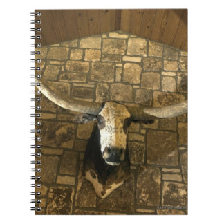 Head of longhorn steer mounted on wall notebooks