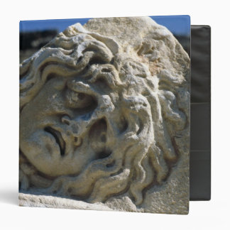Head of Medusa 3 Ring Binder