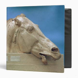 Head of one of the horses of Selene 3 Ring Binder