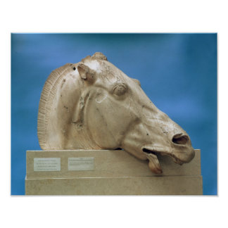 Head of one of the horses of Selene Poster